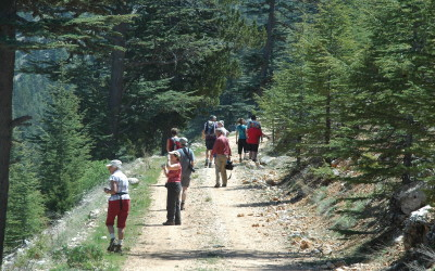 Walking Holiday Participants